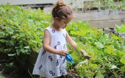 Gardening With Children – My Top Tips