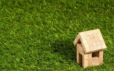 Artificial Grass: Benefits & Considerations